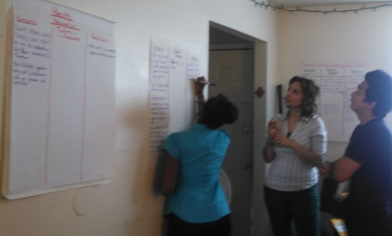 CHI participant, Chelsea Travis, works with lay health workers.
